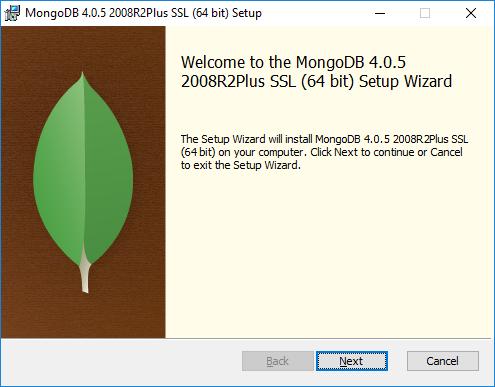 MongoDB Setup Start